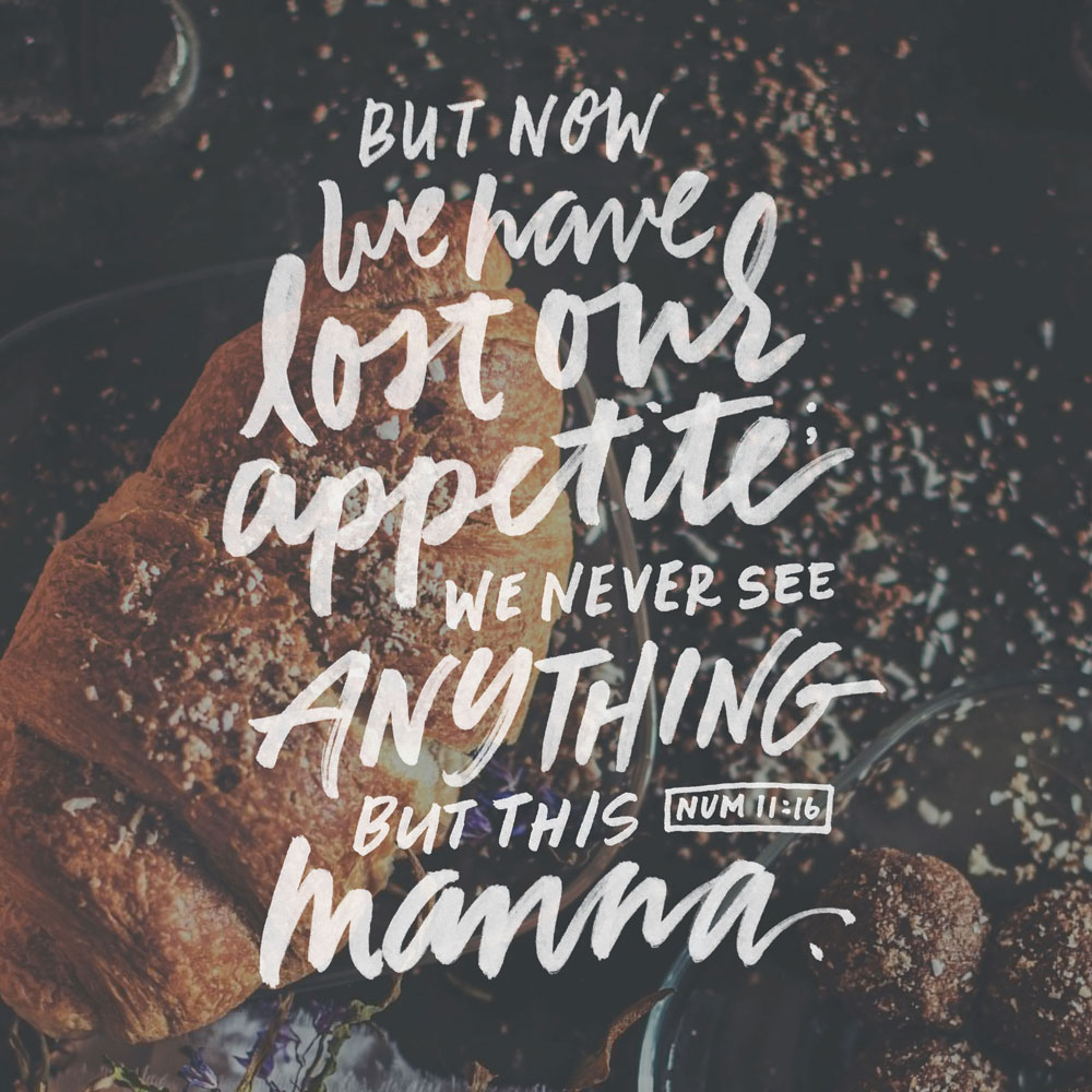 but now we have lost our appetite; we never see anything but this manna